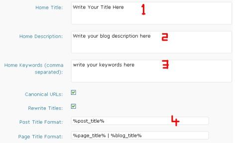 All in One SEO for Blog Optimization