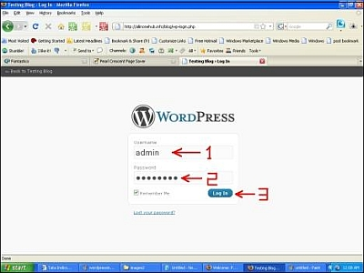 Wordpress Admin Log In
